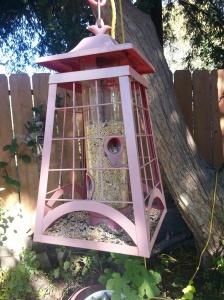 Bird.feeder