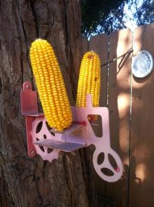 Corn.cobs